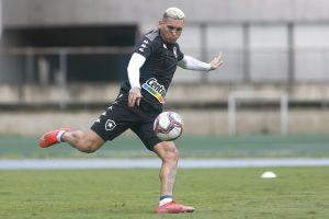 Em fim de contrato com o Botafogo, Rafael Navarro pode deixar o clube